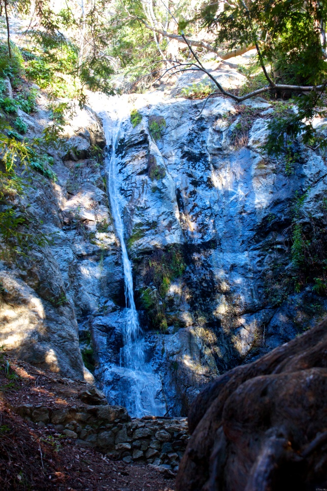 Pfeiffer Falls is located in Pfeiffer Big Sur State Park.