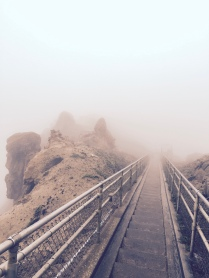 Stairs to Point Reyes