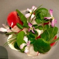 Radish with geoduck, cucumber, buttermilk